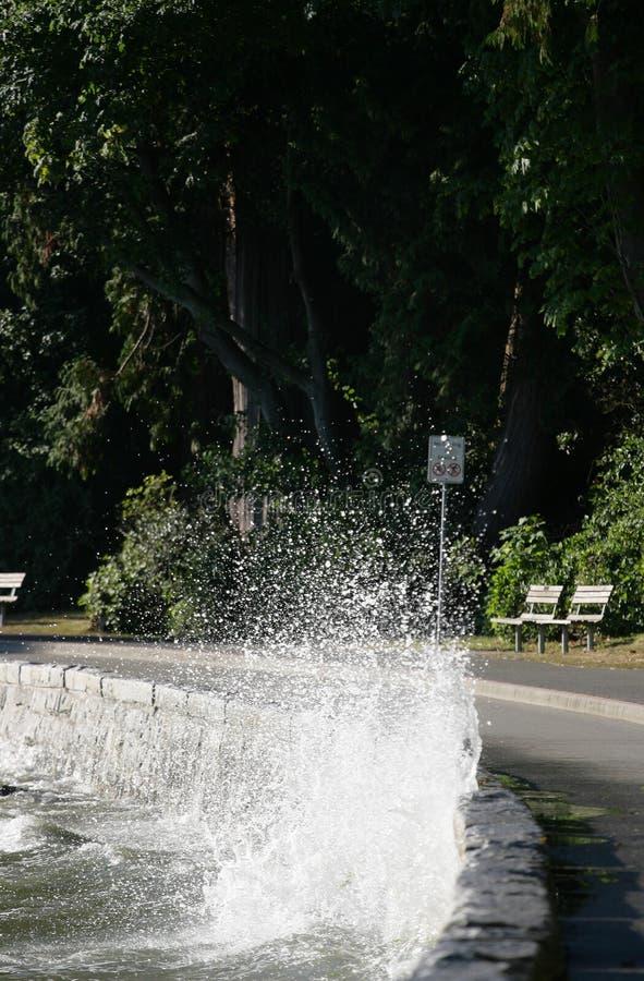 Free Crashing Wave Stock Images - 1028224