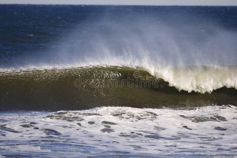 Download Crashing wave stock photo. Image of splash, shore, surfing - 13315760