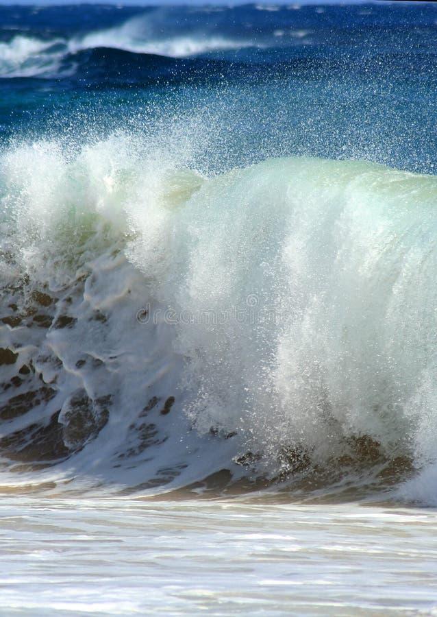 Free Crashing Wave Royalty Free Stock Images - 4308199