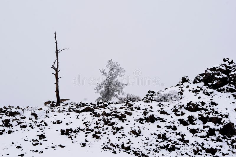 Cratères de la lune en hiver photos libres de droits