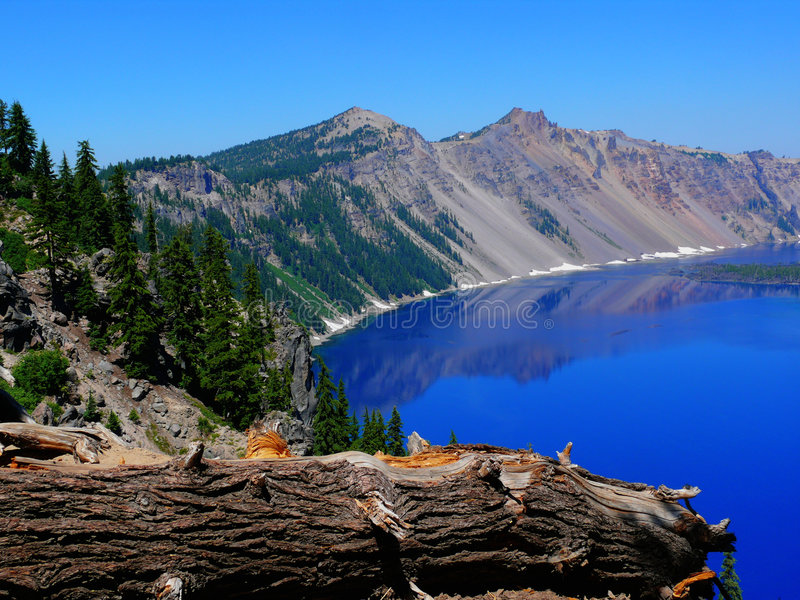 Crater Lake. View of Crater Lake, the incredible blue with reflections in it. Fallen Pine tree in the foreground. Taken at Crater Lake Oregon South Rim stock photos