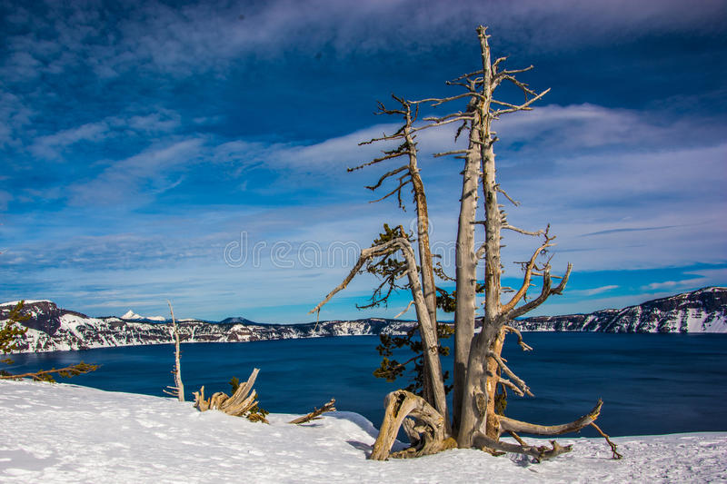Crater Lake. With its beautiful blue water was formed after a violent volcanic eruption 7700 years ago. It is now a National Park in Oregon royalty free stock image