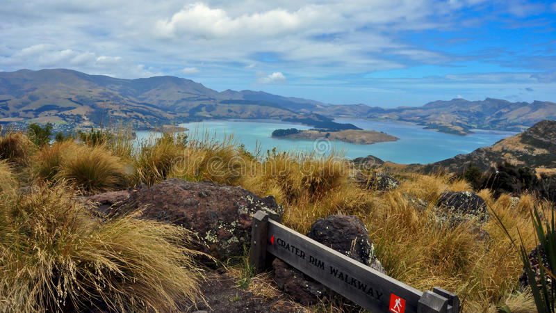 Crater Rim Hike. New Zealand. Panorama of Lyttleton Scenic Reserve from the Crater Rim hike. New Zealand royalty free stock photography