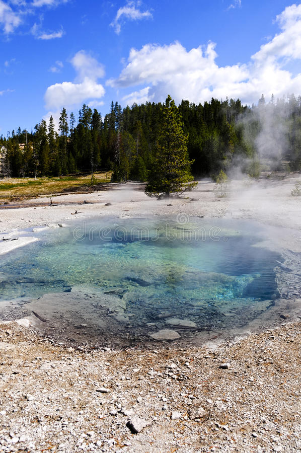 Download Crater Spring, Yellowstone National Park Stock Image - Image: 23923033
