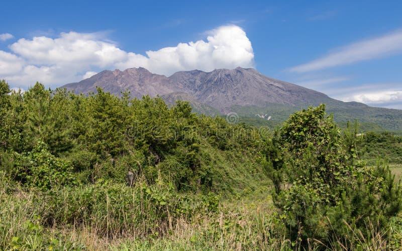 Cratera do Vulcan entrado em erupção Sakurajima coberto pela paisagem verde Tomado da vigia do ponto de observação Localizado den imagem de stock royalty free