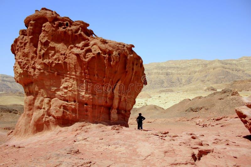 A cratera e o vale bíblicos de Timna no sul de Israel foto de stock