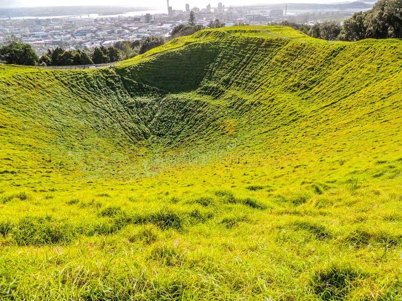 Cratere inattivo del vulcano, supporto l'Eden, Auckland, Nuova Zelanda fotografia stock libera da diritti