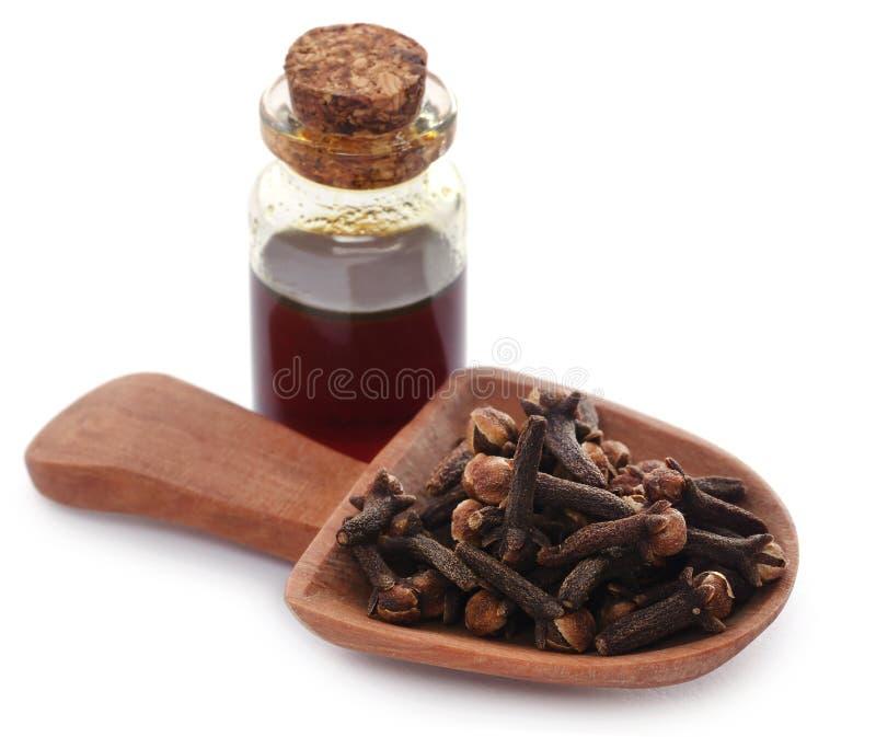 Cravo-da-índia fresco com óleo em um frasco foto de stock