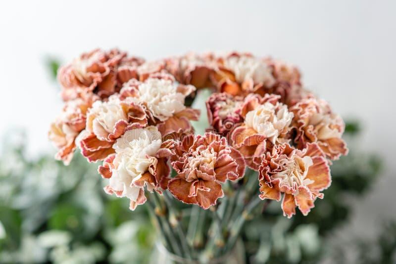 Cravo incomum da cor do grupo no vaso de vidro Flores do ramalhete no fundo claro wallpaper fotos de stock