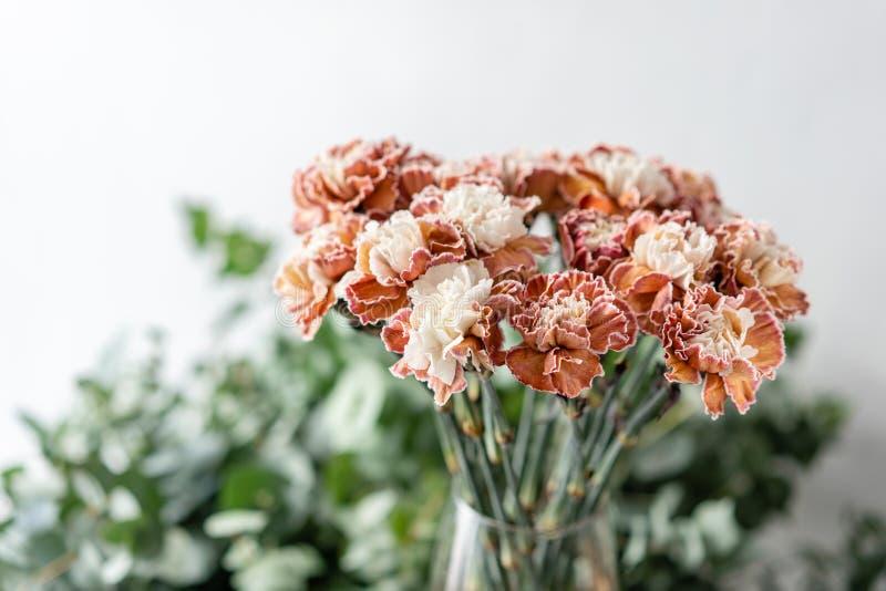 Cravo incomum da cor do grupo no vaso de vidro Flores do ramalhete no fundo claro wallpaper fotos de stock royalty free