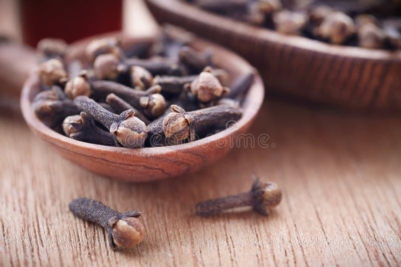 Cravos-da-índia orgânicos fotografia de stock