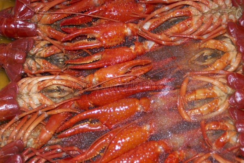 Download Craw ψάρια παγωμένα στοκ εικόνα. εικόνα από θαλασσινά, αστακός - 377369