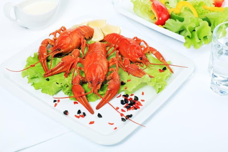 Crawfish stock images