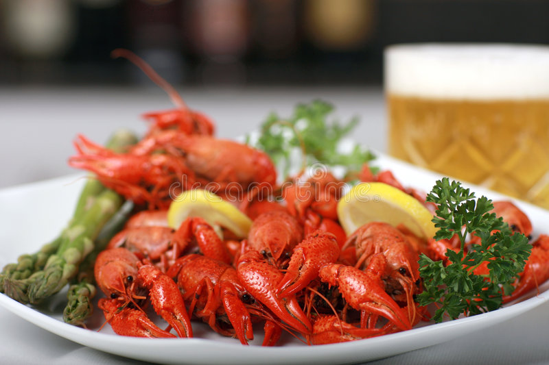 Crawfish and beer royalty free stock photos