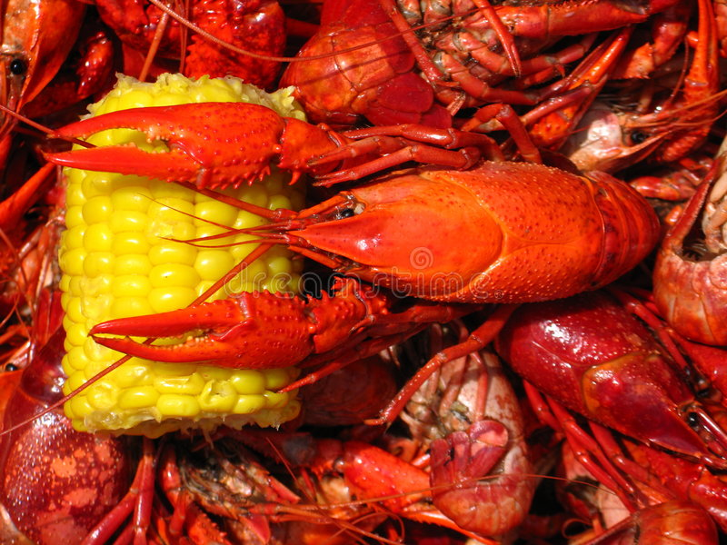 Crawfish Boil royalty free stock image