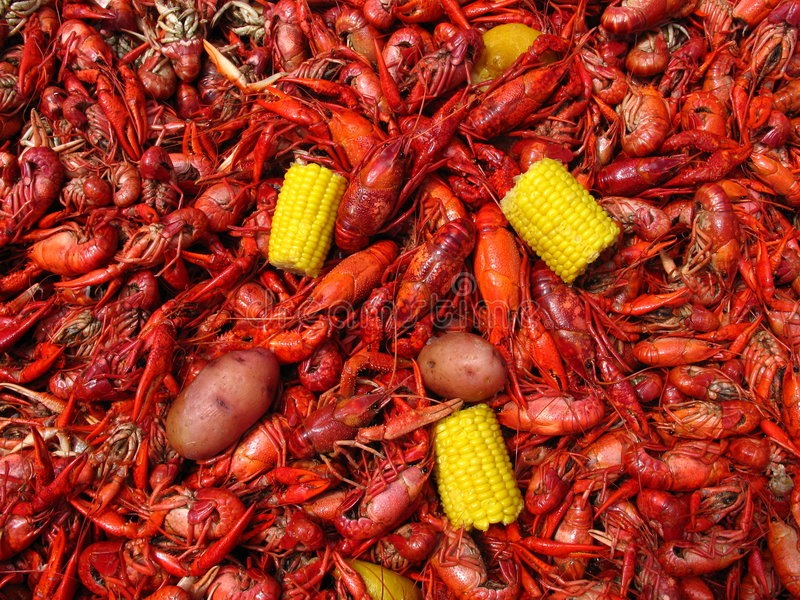 Crawfish Boil. Large boiled Louisiana crawfish (crayfish) with potatoes, ears of corn, and lemon royalty free stock photo