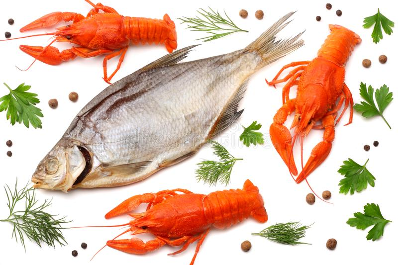 Crawfish with dried fish isolated on white background. Beer brewery concept. Beer background stock photos
