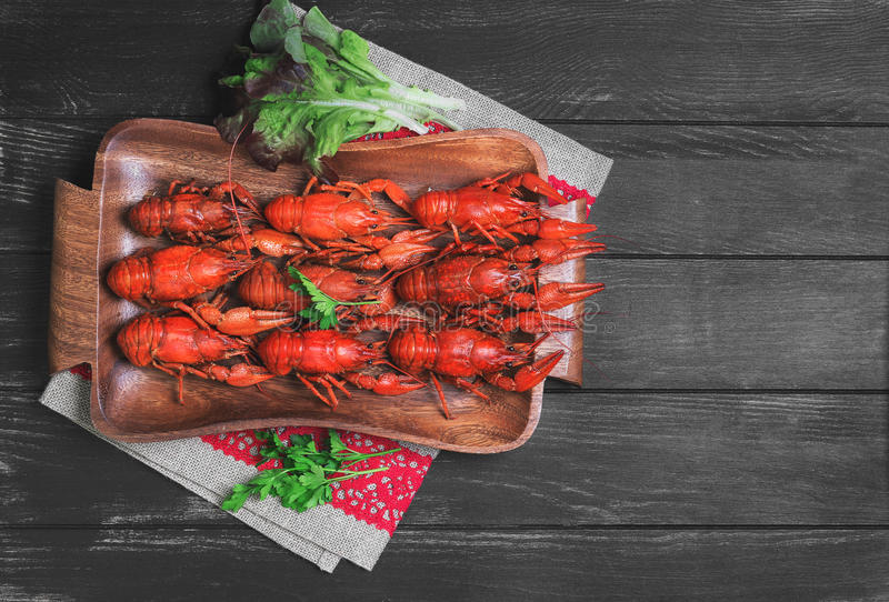 Crawfish food photo. Cancers to beer, dill, boiled crawfish, beer snacks, green leaves of fresh lettuce, parsley on a wooden tray on a black dark wooden royalty free stock image