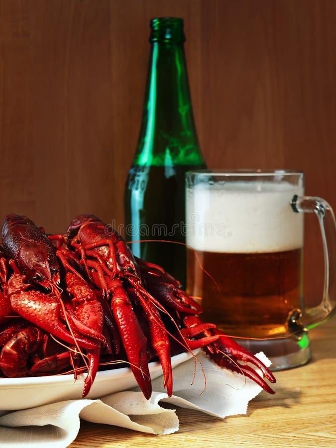 Crawfishes en bier royalty-vrije stock afbeelding