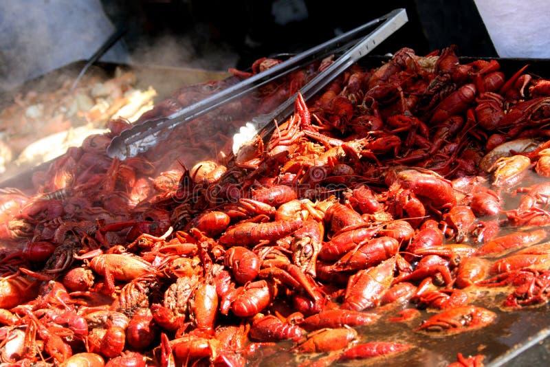 crawfishfestivalskaldjur arkivfoton