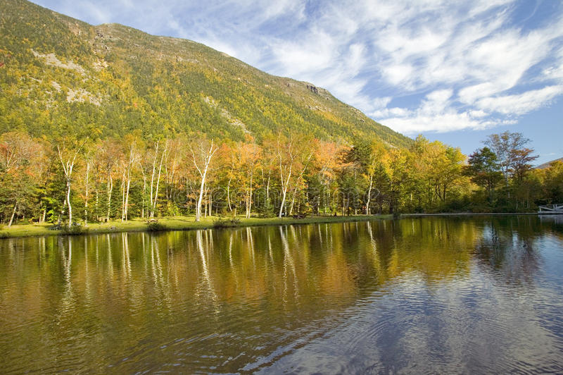 Crawford Notch State Park i de vita bergen, New Hampshire royaltyfri fotografi