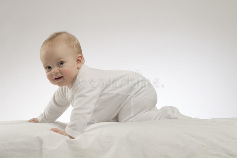 Crawling cute baby boy on the white background. Studio shot stock photography