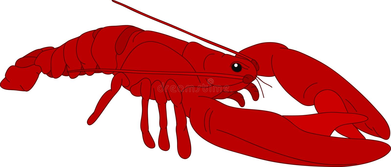 crayfish ilustracja wektor