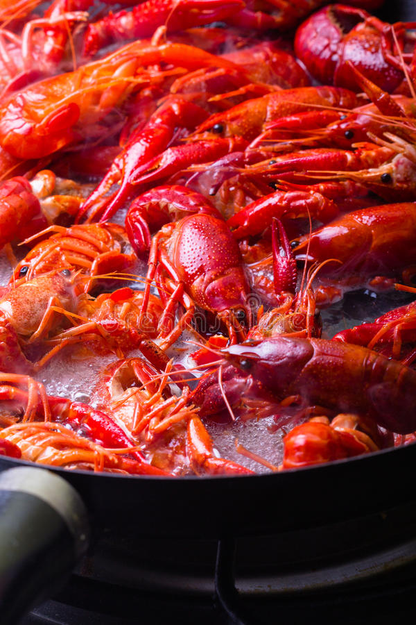 Crayfish. Crayfish are being cooked on a frying pan stock photo