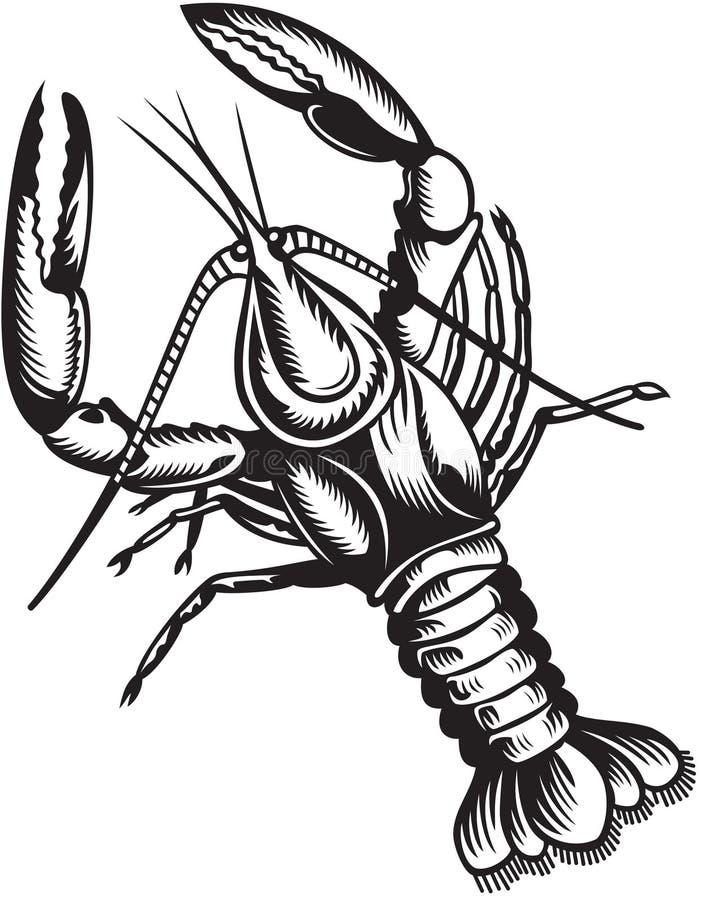 Crayfish. Black and white style. Stylized illustration of crayfish. Black and white style royalty free illustration