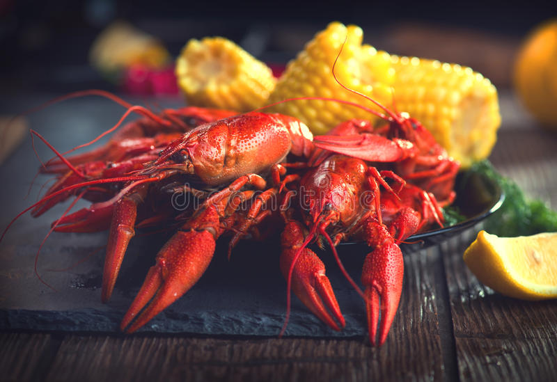 Crayfish. Creole style crawfish with corn and potato. Crayfish. Creole style crawfish boiled serving with corn and potato stock images