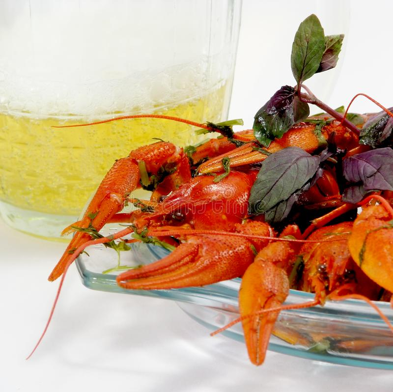 Download Crayfishes and beer stock image. Image of fauna, glass - 8547021