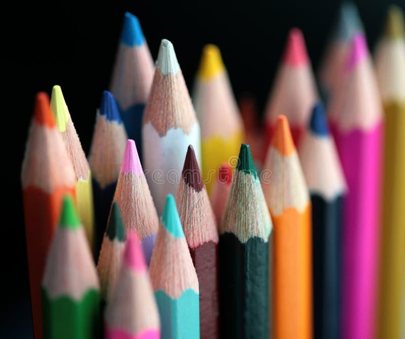 Crayon en bois photo stock