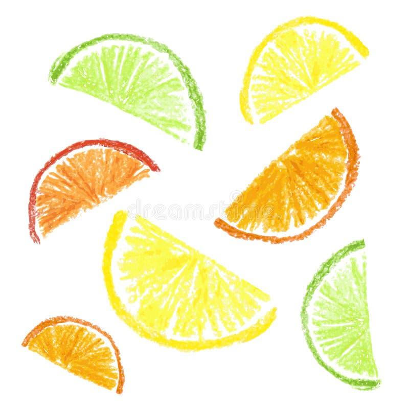 Crayon kids drawn citrus slice. Isolated. Vector illustration royalty free illustration