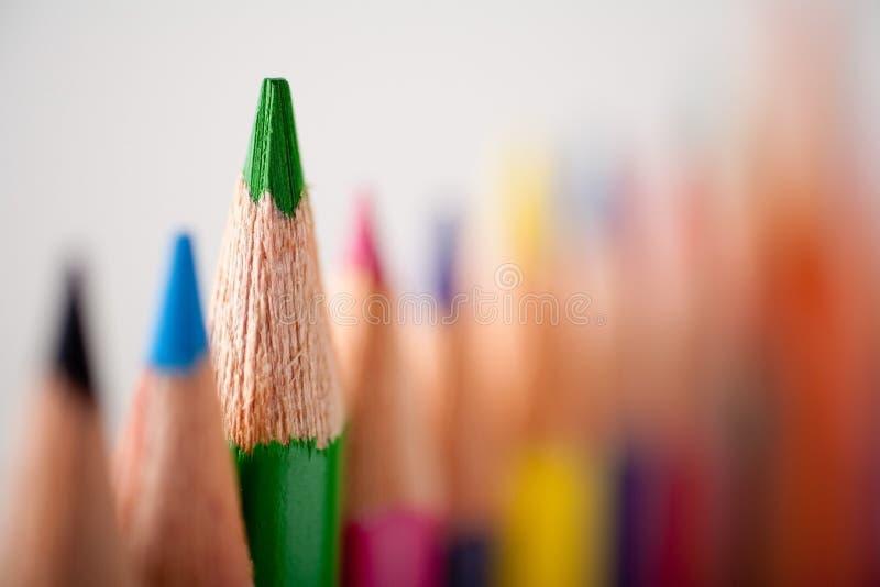 Crayon vert photo libre de droits