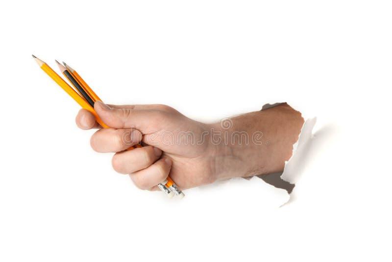 Crayons à disposition d'étudiant sur le fond blanc, concept d'étude images stock