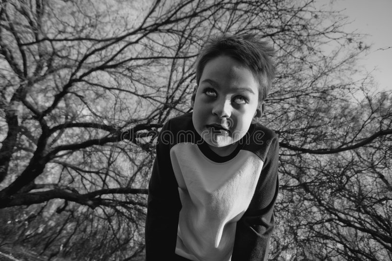 Crazy Boy. Boy in the forest cowers in fear stock photography