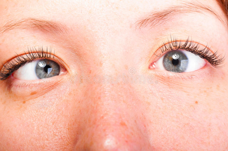 Crazy eyes. Crazy blue female eyes, close up view royalty free stock photos