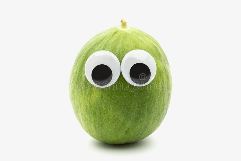 Crazy green melon with googly eyes on white background. The Barattiere is a variety of melon cultivated in Apulia, Italy royalty free stock photo