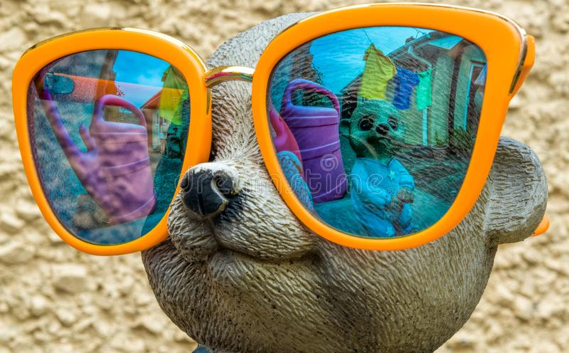 Crazy Meerkats in Mirrored glasses stock photography