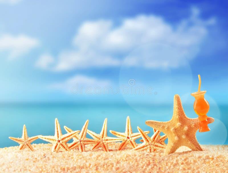 Crazy starfish having fun on beach royalty free stock images