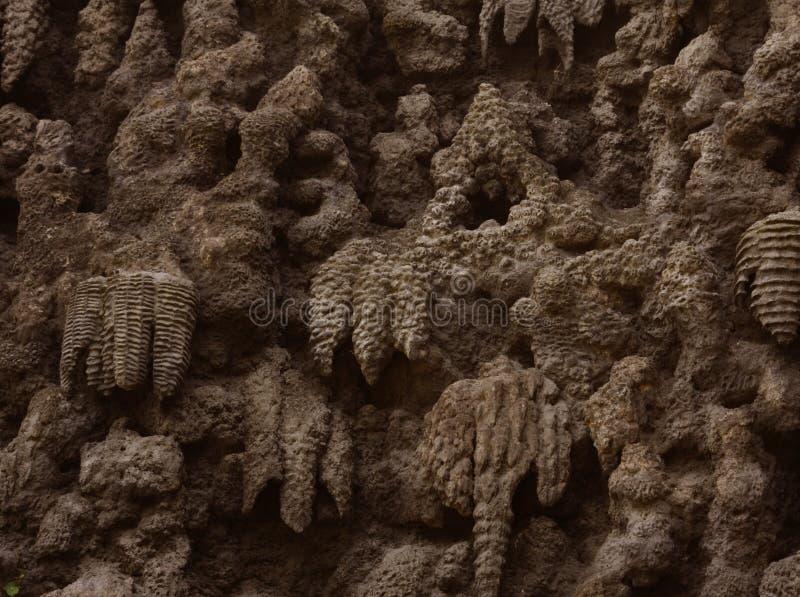Creación artificial del jardín de Wallenstein de la pared de la estalactita, Praga foto de archivo