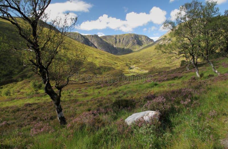 Creag Meagaidh nationales Naturreservat stockfoto