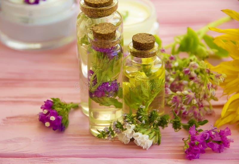 Cream косметика, завод ингридиента полевых цветков, органический год сбора винограда сути увлажнителя свежести продукта на деревя стоковое фото rf