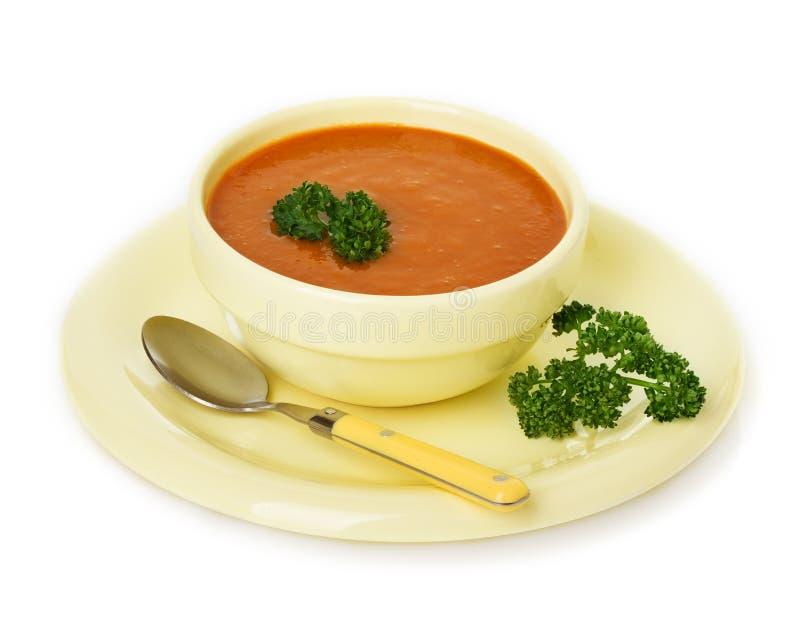 Cream суп на плите стоковое фото