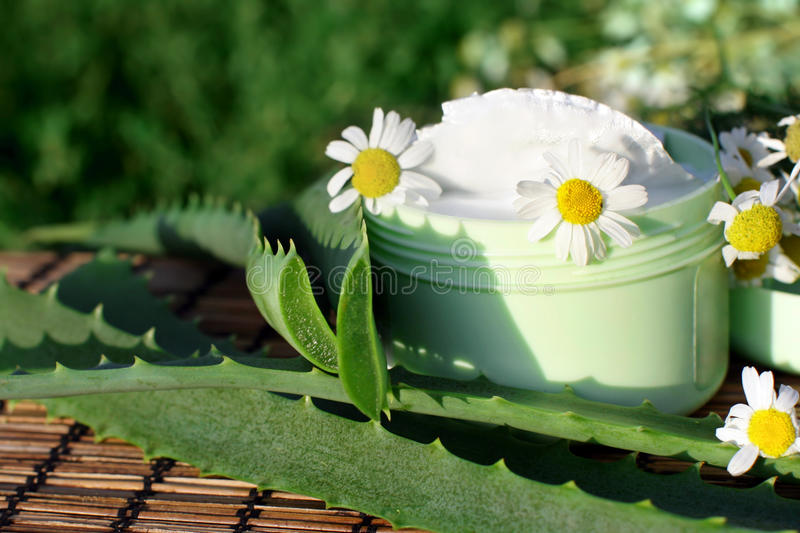 Download Cream With Aloe Vera And Daisies Stock Image - Image: 16506805