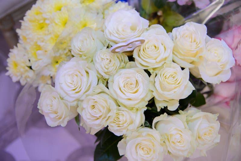 Cream beautiful rose. Cream rose beautiful flower close up. Flora. Decorative flower. Gardening. Delicate petals of a rose stock photos