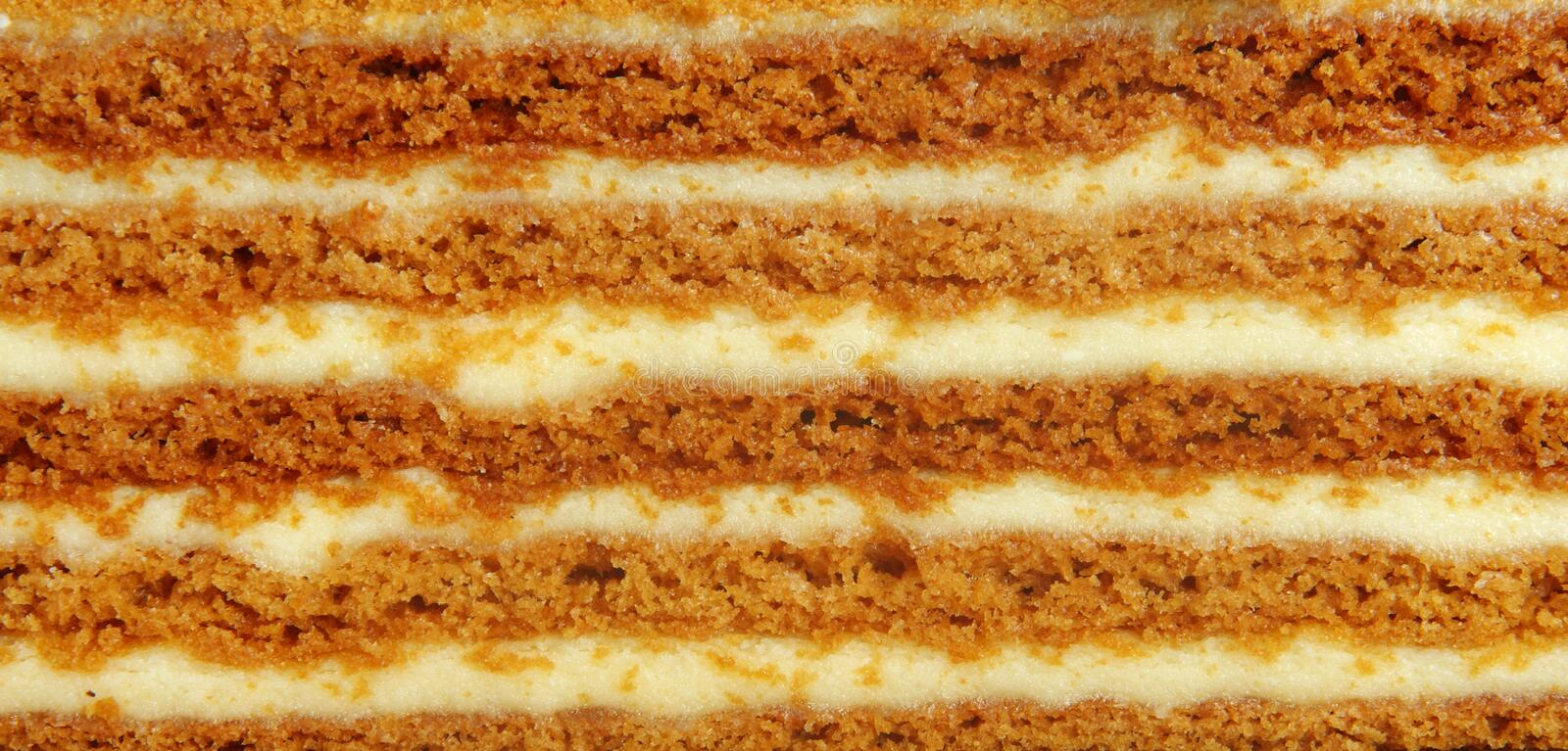 Download Cream cake stock image. Image of calorie, decorated, appetizing - 24526739