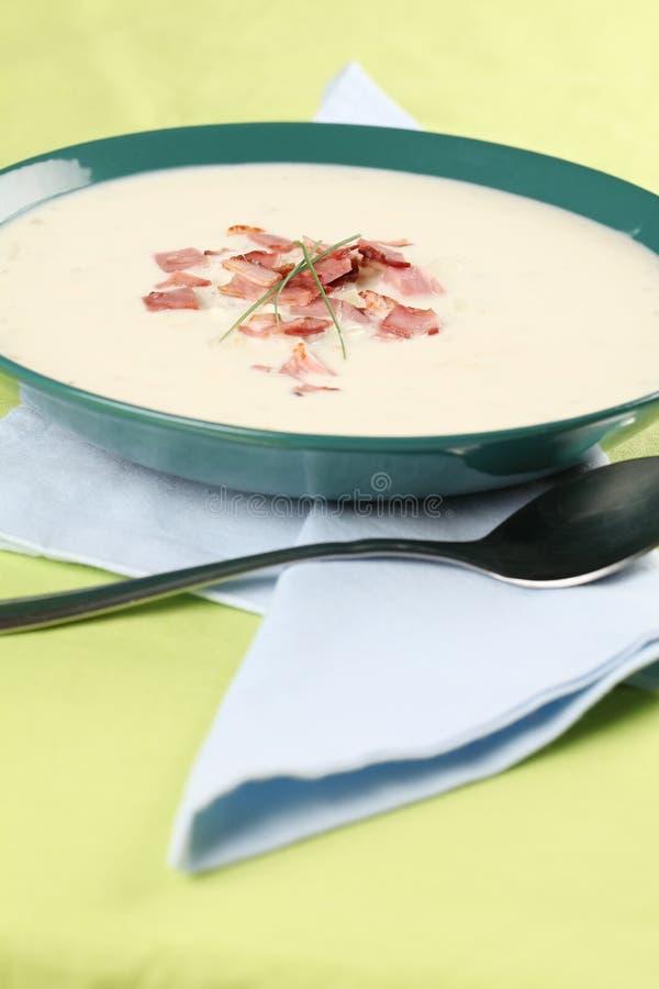 Cream cheese soup. Delicious cream cheese soup with bacon. Shallow dof royalty free stock photos
