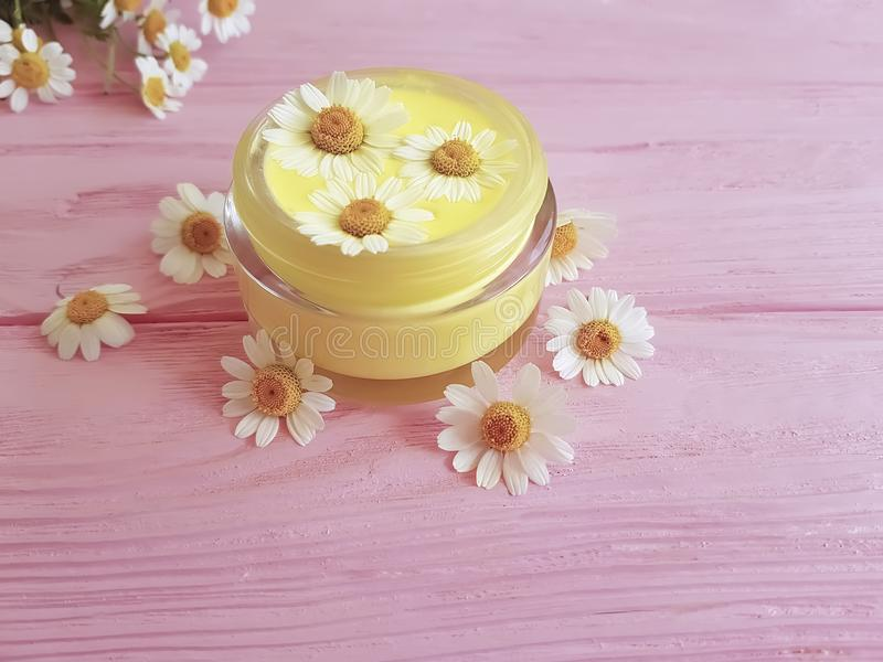 Cream cosmetic daisy extract product freshness flower on a pink wooden background stock image