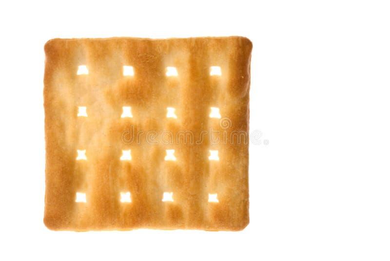Cream Cracker Biscuit royalty free stock image